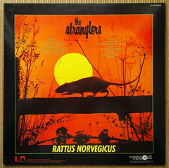The Stranglers - Rattus Norvegicus [1977] (renerox) Tags: thestranglers 70s 77 punk newwave lp lpcovers lpcover lps records vinyl