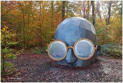Découvrir un autre reflet que soi ©Thomas  Voillaume (philippedaniele) Tags: forêt forêtverte seinemartime exposition forêtmonumentale artistes plasticiens architectes