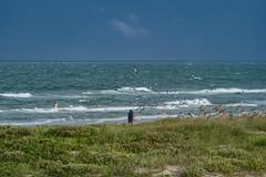 SouthPadreIsland_199 (allen ramlow) Tags: south padre island texas tx sony alpha seascape landscape beach clouds water sand waves