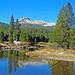Cathedral Peak Reflection, Tuolumne Meadows, Yosemite 2018
