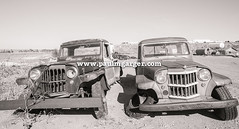 Willys - Brothers To The End (LostOzarkRambler) Tags: willystruck willys oldtrucks trucks abandoned americana jeep jalopy blackandwhite blackwhite bw monochrome wyoming paulmgarger
