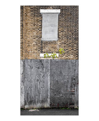 The Built Environment, Walthamstow, East London, England. (Joseph O'Malley64) Tags: thebuiltenvironment newtopography newtopographics manmadeenvironment manmadestructure building structure victorian victorianbuilding victorianstructure unsafestructure subsidence settlement settlementcracks cracks parallelogram walthamstow eastlondon eastend london england britain british greatbritain uk brickwork bricksmortar cement pointing waterdamage frostdamage coalsootdamage airpollutiondamage acidraindamage hygroscopicsaltsinbrickwork damp lintels blockedupwindow sycamoresaplings plywoodpanels plywoodhoardings fencepanels tarmac weeds graffiti scratchedgraffiti urban urbanlandscape urbanarchitecture victorianarchitecture architecture architecturalfeatures architecturalphotography documentaryphotography britishdocumentaryphotography fujix fujix100t accuracyprecision