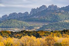 Les Dentelles de Montmirail - Gigondas - Vaucluse (jean-louis21) Tags: automne fall colors dentelles de montmirail gigondas vaucluse