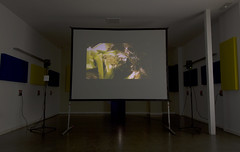Teresa Novelo, Interlineal Instalación sonora/visual