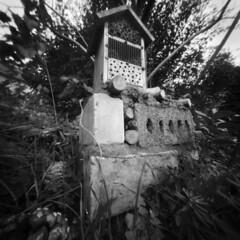 2575 Bug Hotel. (Monobod 1) Tags: ondu pinhole 6x6 fomapan100 rodinal epsonv800 lensless bw