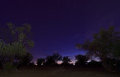 Olivos en la noche (salkalero) Tags: olivos noche estrellas planetas cielo nocturno