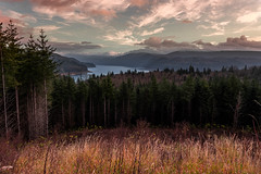 Riffe Lake Washington (Raven Reebs) Tags: landscape riffe lake washington state pnw nature lookout mountains hills grass water trees wide clouds sky beautiful
