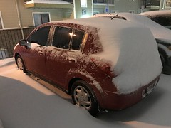 337/365/8 (f l a m i n g o) Tags: car storm snow tuesday 2019 26th november 365days project365