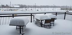 November 26, 2019 - Snowy scene in Lafayette. (David Canfield)