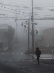 Fuji/Fog