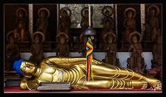 10ème jour / 10th day - Bouddha couché / Lying buddha  - Daisho-in - Miyajima (christian_lemale) Tags: daishoin miyajima japon japan temple statue nikon d7100 宮島 日本