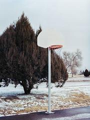 Hoop (Landon S. Christensen) Tags: mamiya 645 super 80mm 28 kodak portra 400 120mm medium format color photography snow winter cloudy tree basketball analog