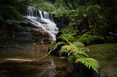 Valley of the Waters || Wentworth Falls (David Marriott - Sydney) Tags: bluemountains newsouthwales australia blue mountains nsw waterfall valley waters wentworth falls water