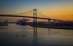 IMG_5905-Vincent Thomas Bridge LA Harbor sunrise (Desert Rose Images) Tags: usa ocean california bridge sunrise los san pacific angeles thomas vincent scenic pedro harbo woods ©rosemary