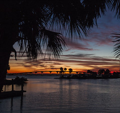 Tropical sunrise (in Explore) (mimsjodi) Tags: amaxbrewerbridge sunrise sky clouds dawn trees palms titusvillefl