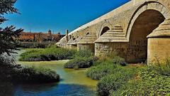 Roman Bridges in Spain (moonjazz) Tags: bridge roman history architecture stone spain cordoba river preservation worldheritage travel arches beauty famous andalusia