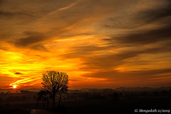 Sonnenaufgang im November (günter mengedoth) Tags: hdpentaxdfa2470mmf28edsdmaw hd pentaxd fa 2470mm f28 ed sdm aw pentaxk1 pentax pk sonnenaufgang himmel lowkey nebel dunst