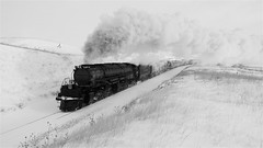 UP Big Boy 4014 In The Snow Black And White! (844steamtrain) Tags: 844steamtrain prr pennsylvania railroad t1 trust flickr 5550 4444 big steam locomotive fastest up boy 4014 sp 4449 lner flying scotsman mallard america usa 3985 844 most popular views viewed railway train trains trending relevant recommended related shared google youtube facebook galore viral culture science technology history union pacific engine metal machine art video camera photography photo black and white monochrome picture bw blackandwhite best top trump news new sp4449 up4014