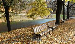 Colorful Autumn 41 (Birute54) Tags: autumn park vilnius lithuania lietuva