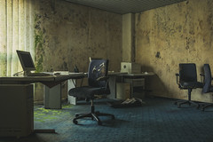 Office Stories (Some Place Only We Know) Tags: office büro mold moss moos schimmel stuhl chair green urbex decay verfall abandoned verlassen