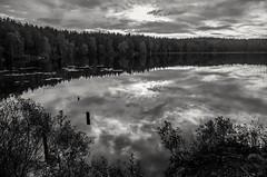 Monochrome lake (Stefano Rugolo) Tags: stefanorugolo pentax k5 pentaxk5 smcpentaxda1855mmf3556alwr kmount monochrome lake forest sky clouds reflections landscape sweden