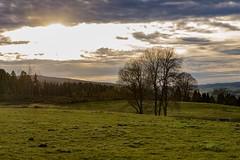 Métabief (Glc PHOTOs) Tags: paysage sun soleil g2 f28 2470 tamron fx nikon d850 métabief