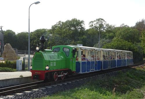 Train pulled by Diesel locomotive Wls40-1225