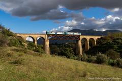 600 Km per una foto! (Daniele Sudati) Tags: aln668 automotrice aln sicilia montelepre ponte viadotto trenitalia ti fs ferroviedellostato regionale diesel 668 palermo partinico xmpr