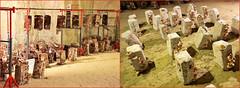 Champignonnière du Saut aux loups, Montsoreau, Maine-et-Loire, France (claude lina) Tags: claudelina france maineetloire montsoreau champignonnière champignon champignonnièredusautauxloups