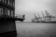 On the waterfront (Özgür Gürgey) Tags: 2019 50mm altona bw d750 elbe hafen hamburg nikon alone grainy lines misty people