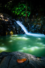 Cascade Le Saut d'acomat. (B.Cédric) Tags: guadeloupe weloveguadeloupe naturephotography thebeautyofnature longueexposition poselongue cascade