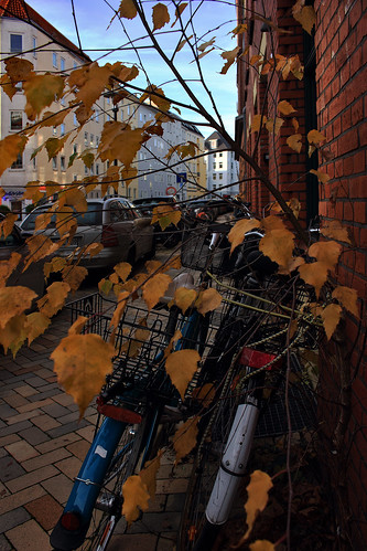 """Herbst Bremerstraße • <a style=""""font-size:0.8em;"""" href=""""http://www.flickr.com/photos/69570948@N04/49131516786/"""" target=""""_blank"""">View on Flickr</a>"""