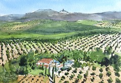 Segura de la Sierra (P.Barahona) Tags: acuarela inkandwatercolor jaen landscape olivos paisaje watercolour watercolor