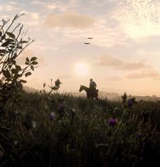''Heartlands'' (HodgeDogs) Tags: flickr games gaming reddeadredemption2 rockstargames kotaku larahjohnson fransbouma flowers horse nature iexplore photography birds bird explore
