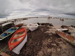 la spiaggia (frastebio) Tags: nuvole mare barche cielo alghe sabbia pontile costa onde