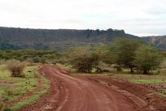 2019-101343 (bubbahop) Tags: 2019 africatrip gadventures tanzania lakemanyara national park safari part2
