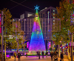 The Hopeful Tree - Wembley Park, London, UK (davidgutierrez.co.uk) Tags: london photography davidgutierrezphotography city art architecture nikond810 nikon urban travel color night blue photographer tokyo paris bilbao hongkong christmas uk skyscraper neon londonphotographer building street colors colours colour europe beautiful cityscape davidgutierrez structure d810 contemporary arts architectural design buildings centrallondon england unitedkingdom 伦敦 londyn ロンドン 런던 лондон londres londra capital britain greatbritain tamronsp2470mmf28divcusdg2 2470mm tamron tamronsp2470mmf28divcusd tamron2470mm vibrant edgy vivid 倫敦 thehopefultree wembleypark xmas christmaslights winterfest christmastree