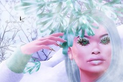 FROSTY FEELING (Rachel Swallows Inworld Elenamicheals Core) Tags: accessories catwa eyes fashion garden holly ice landscape lashes makeup omega redeux sanarae scandalize secondlife snow tmcreations venge winter zibska