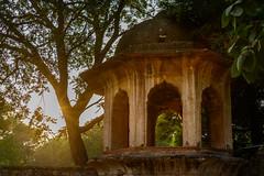 India, - near Qutab Minar - 0198 (Peter Goll thx for +14.000.000 views) Tags: reise qutabminar indien nikon delhi travel india sun nikonz6 nikonz nikkor 2019 nikkor28300 sonne neudelhi