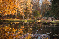 Autumn foliage (hjuengst) Tags: herbst herbstfarben foliage leaves herbstlaub water see lake zinneberg bavaria bayern spiegelung reflection reflektionen bridge brücke ebersberg ebersbergerland