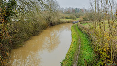Brinklow Canal Walk 24th November 2019 (boddle (Steve Hart)) Tags: november canal walk 24th 2019 brinklow stevestevenhartcoventryunitedkingdomcanon5d4 road england canon britain bruce united steve great 5d hart steven coventry wyke kingdon wyken boddle life wild bird nature birds is natural wildlife ii usm standard 100400mm 6d wilds 2470mm mk4 flowers winter summer flower butterfly insect spring spiders moth butterflies insects creepy fungus moths crawley fungii autumn sunset sky cloud sun weather clouds landscape seasons panoramic