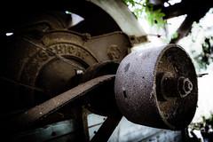 Main belt (vale0065) Tags: belt beltdrive pulley poelie flywheel vliegwiel roest roestig old oud industrial industrieel industrie industry rust rusty detail machine riemaandrijving agriculture agrarisch farm boerderij verlaten abandoned slovenia slovenië machinery schicht