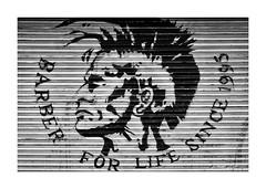 Barber for Life (PeteZab) Tags: shutter art urban shop barber grime grunge punk mohican peterzabulis