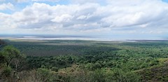 2019-101412 (bubbahop) Tags: 2019 africatrip mtowambu tanzania part2 gadventures lakemanyara