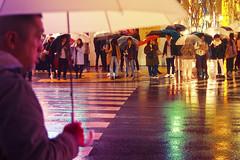 LET THE RAIN SHINE IN 89 (ajpscs) Tags: ©ajpscs ajpscs 2019 japan nippon 日本 japanese 東京 tokyo city people ニコン nikon d750 tokyostreetphotography streetphotography street shitamachi night nightshot tokyonight nightphotography citylights tokyoinsomnia nightview strangers urbannight urban tokyoscene tokyoatnight rain 雨 雨の日 cityrain tokyorain nighttimeisthenewdaytime lostnight noplaceforthesun anotherrain umbrella 傘 whenitrainintokyo arainydayintokyo lettherainshinein
