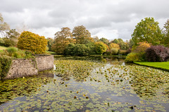 Garden pond at Sizergh Castle (Keith now in Wiltshire) Tags: pond water lilies garden ornamental landscape wall tree grass sky sizergh castle kendal cumbria lakedistrict nationalpark england nationaltrust