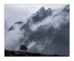 Kyanjin Gompa, Upper Langtang Valley, Nepal (Sean D H Lewis) Tags: nepal kyanjin himalayas mountain langtang
