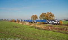 193623_Soest_201119 (florisdeleeuw) Tags: vectron 193623 41309 katy containertrein rfo railforceone g