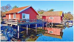 Sydkoster (Rex Block) Tags: lg g8 thinq mobile cell sverige kostet sydkoster sweden autumn coast dwelling landscape harbor ekkidee