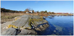 Sydkoster Strand (Rex Block) Tags: lg g8 thinq mobile cell sverige kostet sydkoster sweden autumn coast landscape swedish ekkidee